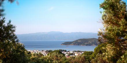 Utsikt over sørkysten