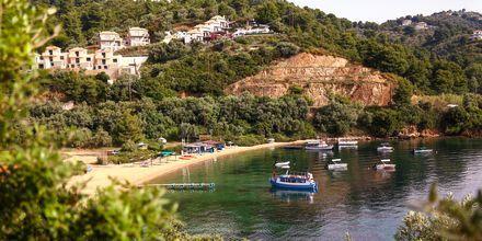 Vakker utsikt over Tzaneria Beach