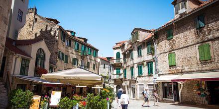 Uken avsluttes i Split. Her møter vi guiden for en byvandring.