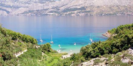 Langs Kroatias kyst er det mange fine badebukter