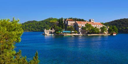 Skjærgårdscruise i Kroatia med Desire
