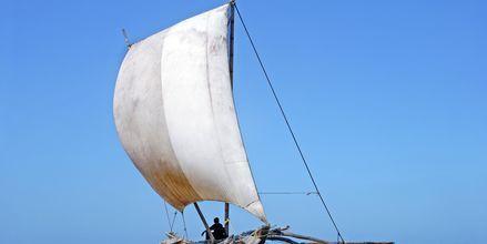 Fiskebåt i Bentota