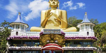 Det gylne tempel i Dambulla