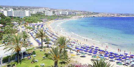 Stranden ved ved hotell Stamatia i Ayia Napa, Kypros.
