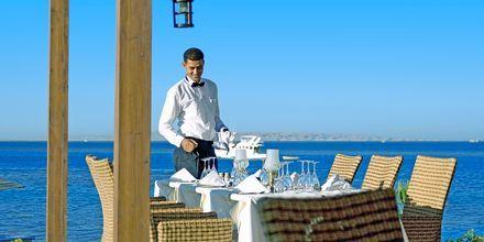 Alex Beach Bar and Restaurants