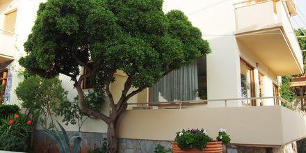 Stoupa (hotell)