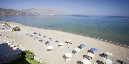 Stranden ved Sunny Bay