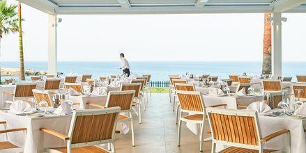 Terrassen til Sage Restaurant