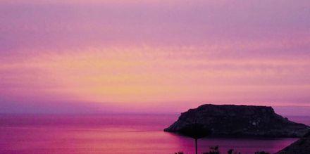 Solnedgang på Sunset