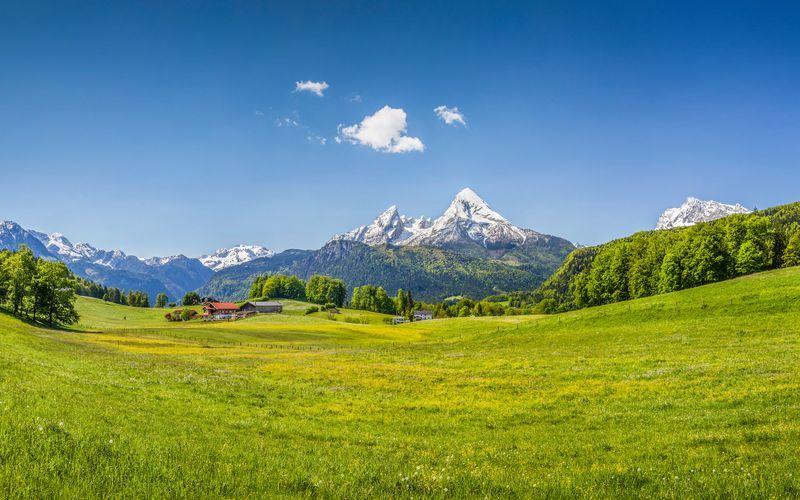 Alpene