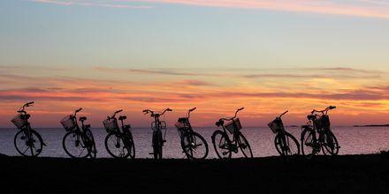 Sykkeltur med gjengen i solnedgangen