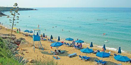Ammes Beach i Svoronata, Kefalonia.