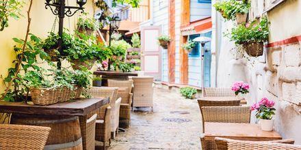 Hyggelig lokalmiljø med uteserveringer i Tallinn.