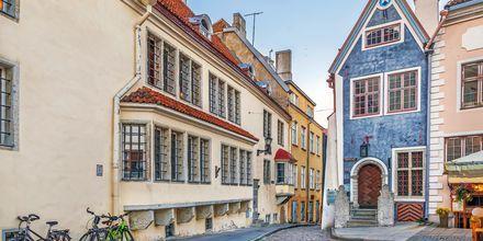 Vakre hus i Tallins gamleby.
