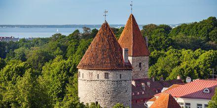 Tårn fra middelalderen i Tallinn, Estland.