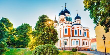 Aleksander Nevskij-katedralen på Domberget i Tallinn, Estland.