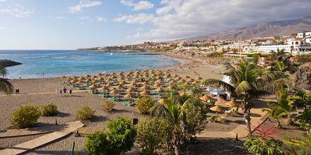 Deilige stranddager på Tenerife