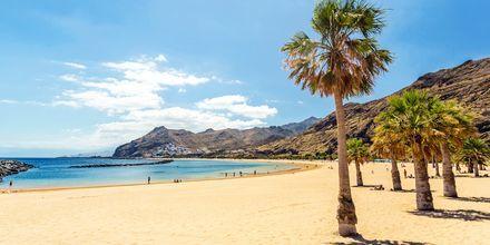 På Tenerife er det flust med sandstrender