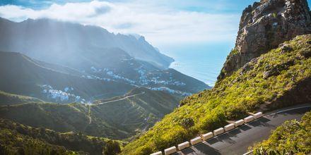 Tenerife med flotte vyer