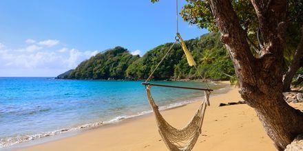 Strand på nordre Tobago