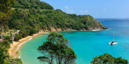 Bukt på nordsiden av Tobago