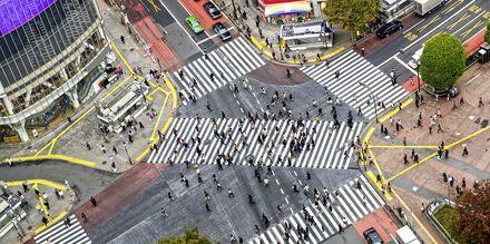 Veikrysset i Shibuyas t-banestasjon er kjent som det mest trafikkerte i hele verden.