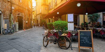 Lucca er hovedsete i provinsen med samme navn, og er en pittoresk og velholdt gammel by.