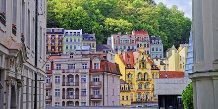 Tsjekkia