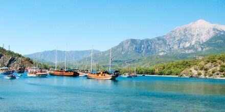 Ta en tur med en Gulet båt