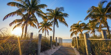 Strand i Florida.