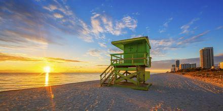 Soloppgang over Miami