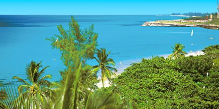 Varadero: blått hav, hvite strender og grønne palmer