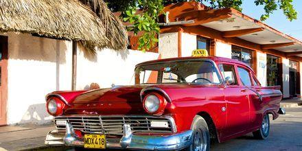 """Karakteristisk """"dollarglis"""" på Cuba"""