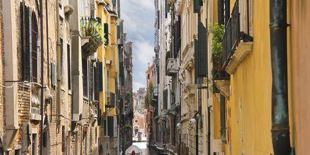 Det er trangt om plassen i noen av Venezias kanaler