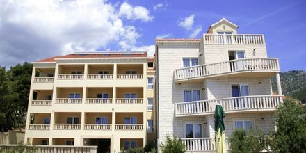 Villa Dzamonja