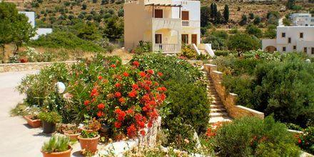 Villa Ostria i Alinda på Leros
