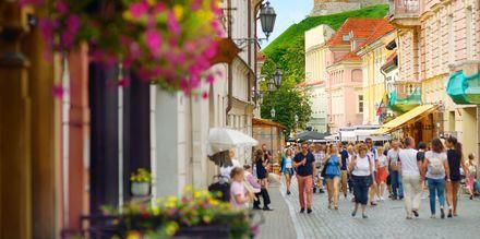 Den UNESCO-merkede gamlebyen i Vilnius, fylt med restauranter og shopping.