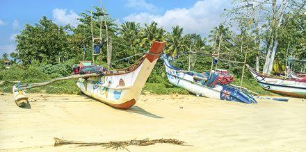 Fiskebåter på stranden