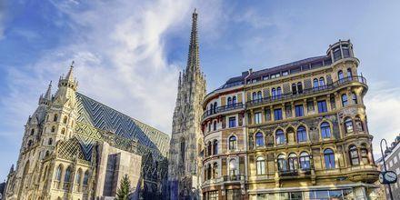 Stefansdomen – Wiens katolske domkirke og er et viktig landemerke i storbyen.