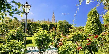 Omtrent halvparten av Wien består av grøntområder.