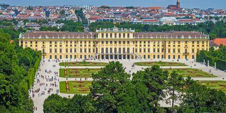 Schönbrunn slott er det mest pampete slottet i Wien.