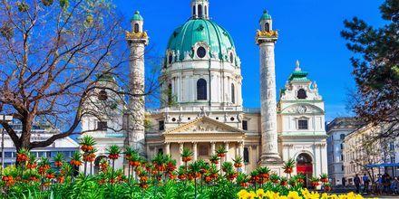 Karlskirsche er en staslig kirke i Wien fra barokk-tiden.